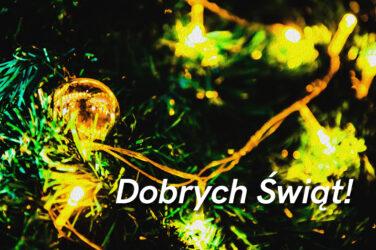 Grafika - zielone, świąteczne gałązki i hasło: DOBRYCH ŚWIĄT!